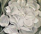Georgia O'Keeffe : White Calico Flower 1931 : $369