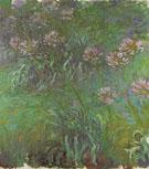Claude Monet : Agapanthus 1916 : $369