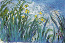 Claude Monet : The Irises c1915 : $389