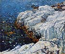 Childe Hassam : Jelly Fish 1912 : $389