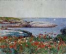 Childe Hassam : Poppies Isles of Shoals 1891 : $389